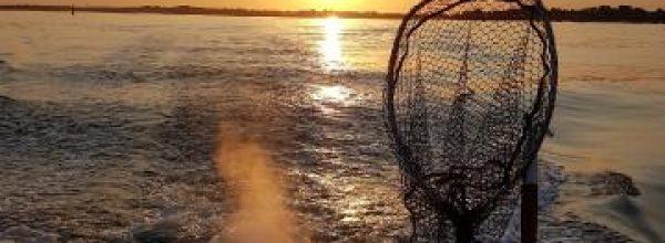 Concours de pêche du mouillage de Merquel / 18 Aout 2018